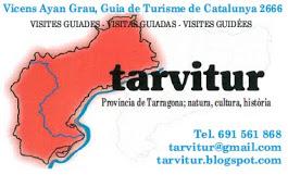TAVITUR